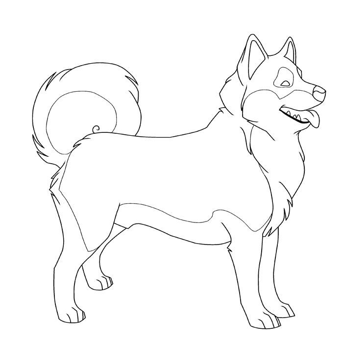 Printable Husky Dog Coloring Pages