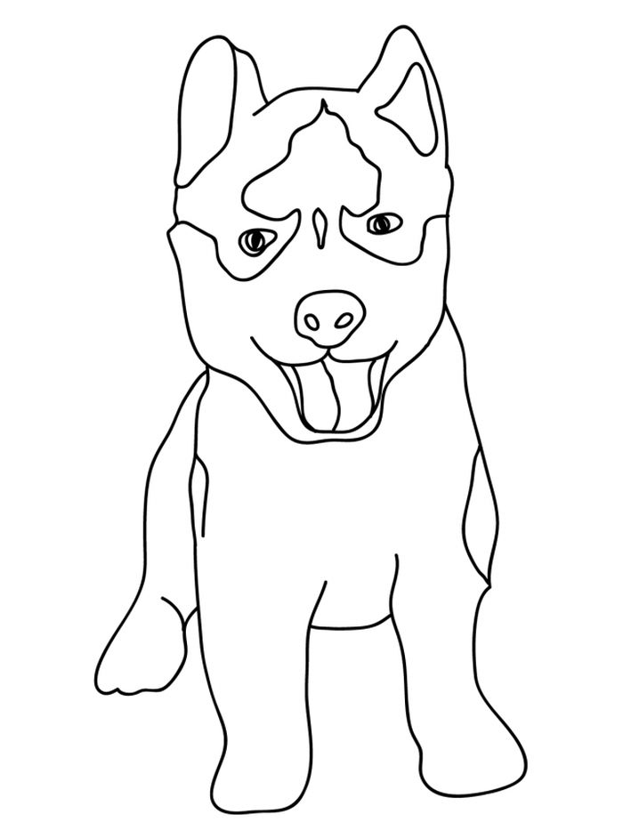 Printable Husky Puppies Coloring Pages