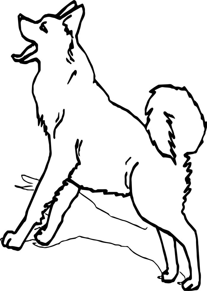 Printable Husky Sled Dogs Coloring Pages