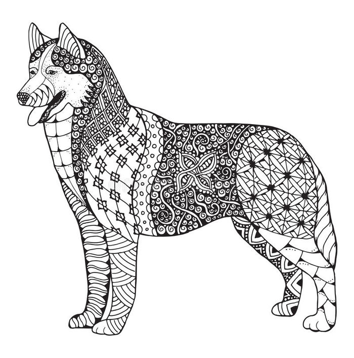 Printable Pattern Coloring Pages Of Husky